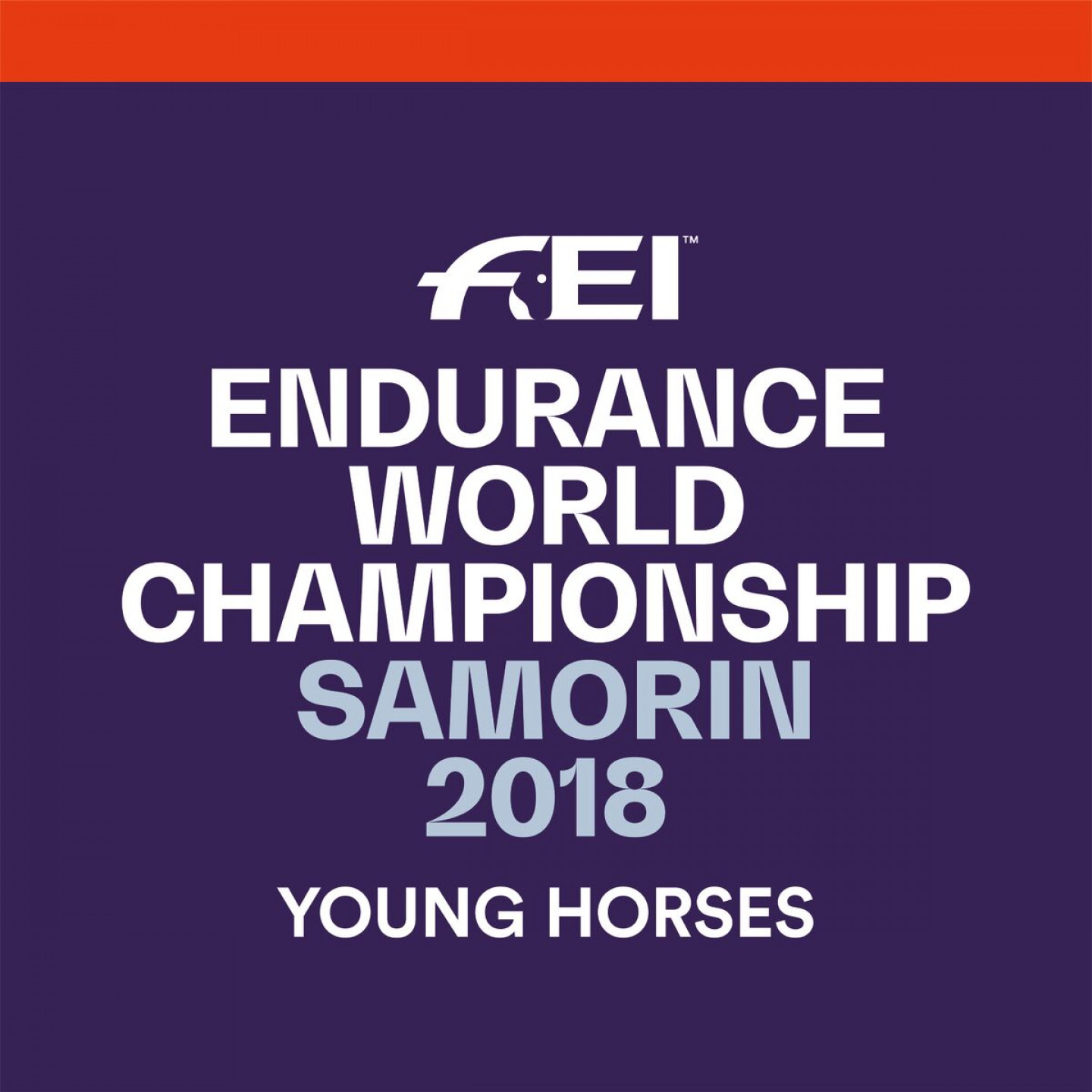endurance logo new
